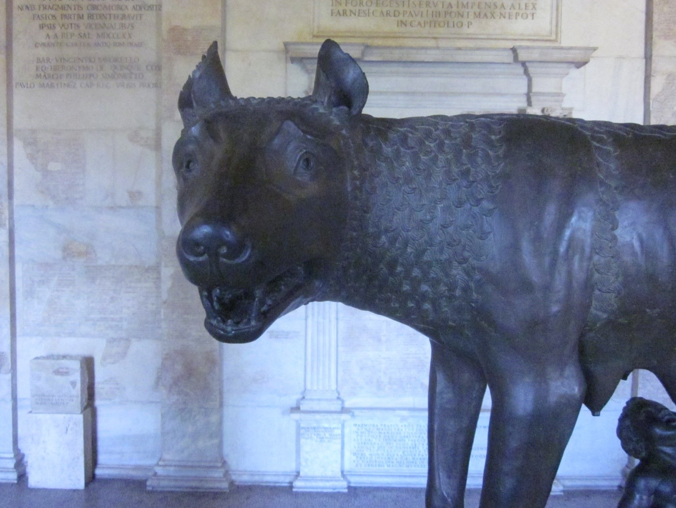 Capitoline Wolf1